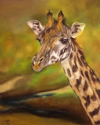 Giraffe, Pastell, 24x30cm, Foto Andreas Trächslin
