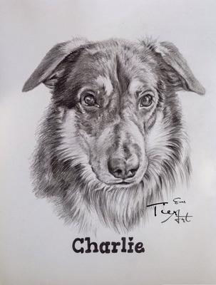 Mischling Charlie, 23x30,5cm