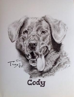 Mischling Cody, 23x30,5cm