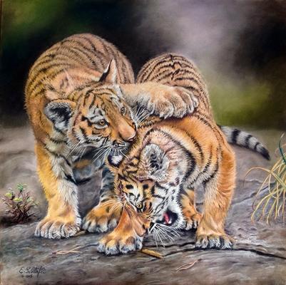 Spielende Tigerkinder, Pastell, 30x40cm, Foto Emmanuel Keller, wildlifereferencephotos.com