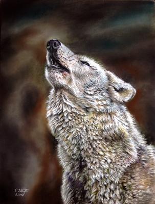 Heulender Wolf, Pastell, 30x40cm, Foto Paul Fine