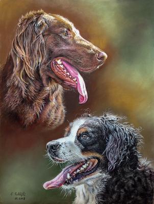 Flatcoated Retriever und Berner Sennenhund, 30x40cm