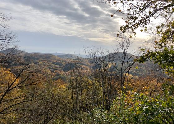 Das Siebengebirge
