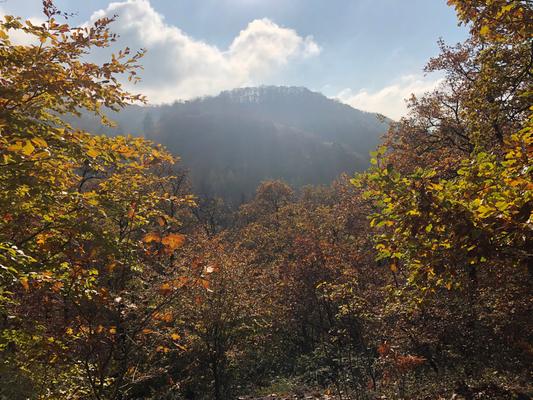 Blick zur Löwenburg
