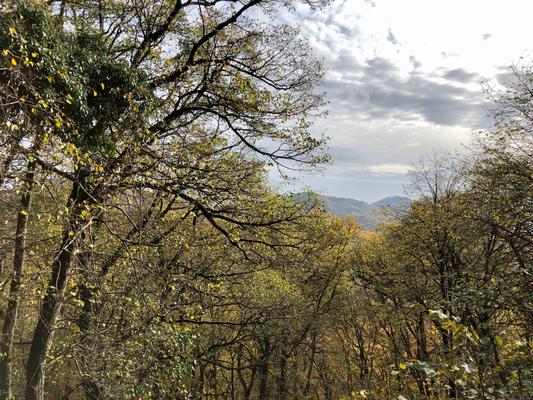 Blick vom Nonnenstromberg zur Löwenburg