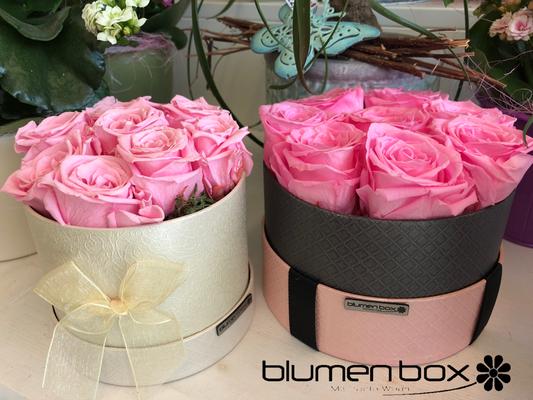 Blumenbox mit gefriergetrockneten Rosen