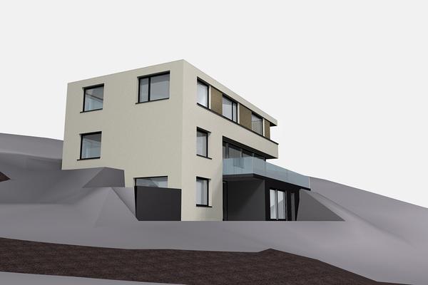 starklvieli_architekten_einfamilienhaus_horw_03