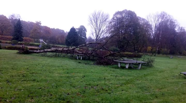 Foto: privat 11.17 - Der Sturm hat auch das Freibad nicht verschont..