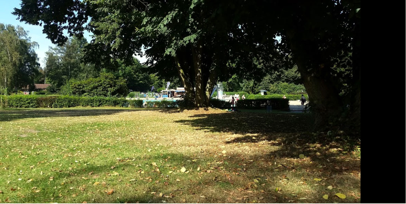 Foto: Michael Drewitz 8.2016 - mit herrlichem Schatten unter alten Bäumen - wie im Park