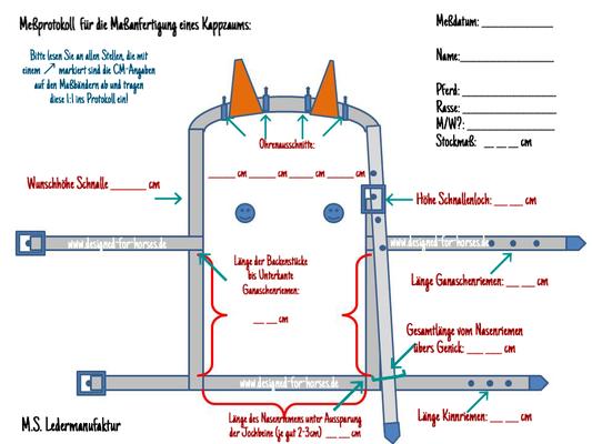 Meßprotokoll für Kappzaum mit festem Naseneisen
