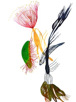 Talk, 30 x 40 cm, Aquarellfarbe auf Papier, Susanne Renner, 2018