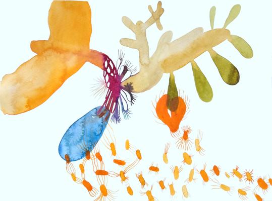 Connect, 30 x 40 cm, Aquarellfarbe auf Papier, Susanne Renner, 2017