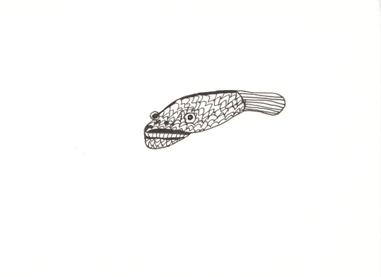 Fisch, 13 x 17,5 cm, Tuschestift auf Papier, Susanne Renner-Schulz