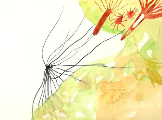 Feel, 36 x 48 cm, Aquarellfarbe auf Papier, Susanne Renner, 2017