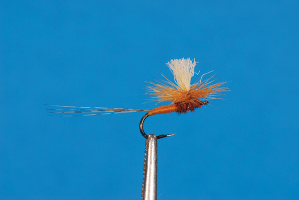 Sherry Spinner Parachute dressing