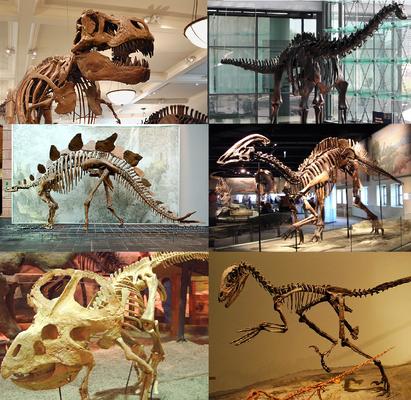 Цивилизатор-палеонтолог