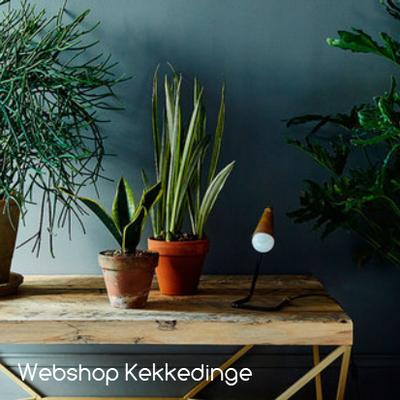 Webshop: Kekkedinge