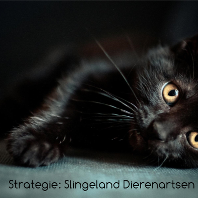 Strategie: Slinegland Dierenartsen