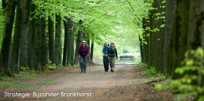 Strategie: BijzonderBronckhorst