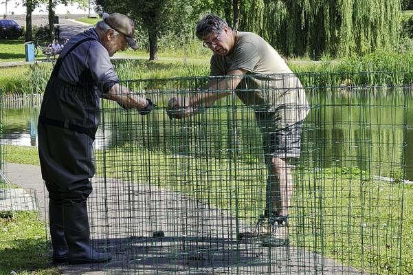 Op 21 juli wil Jan Hoen een proef doen met het uitzetten van 18 kooien aan de smalle kant van het eiland. Loek helpt hem met de voorbereidingen.