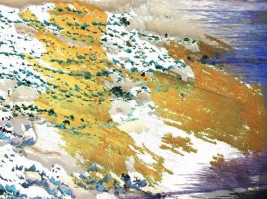 Etienne SCHWARCZ,peinture digitale,60/80, 2016