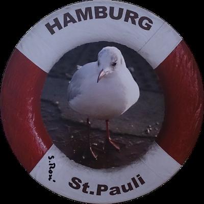 "Möwe auf St. Pauli  <span style=""font-size: 26px;""><span style=""color: #41818f;""><strong>12 €</strong></span><br /></span>"