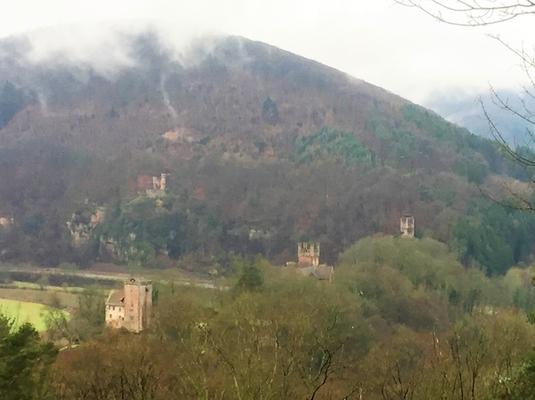 Alle vier Burgen von Neckarsteinach