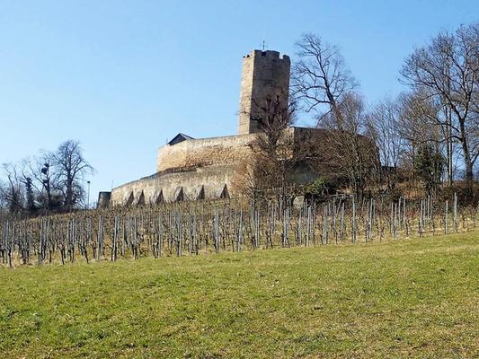 Die Burg von der Südseite