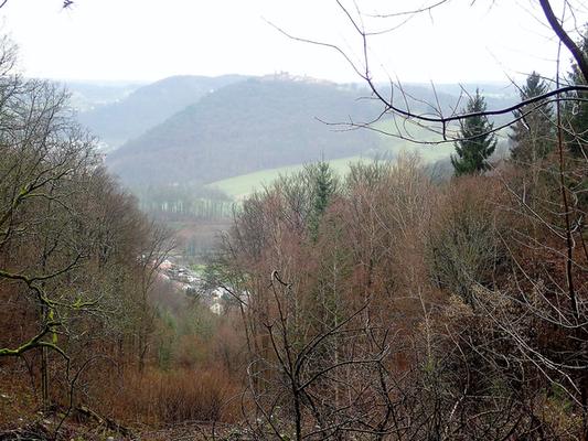 Von der Steinklausen Hütte Blick auf den Dilsberg und Neckarsteinach