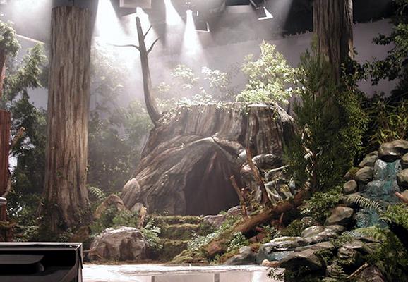 擬岩・擬木 『屋久杉』