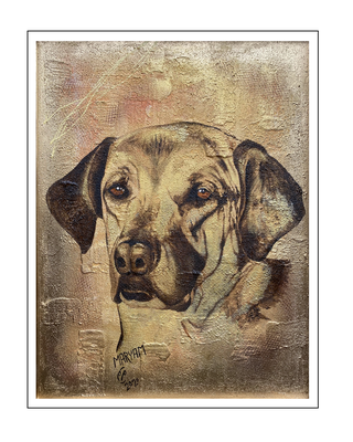 'Dogs are beautiful: Hichie' Size: 60x80x3