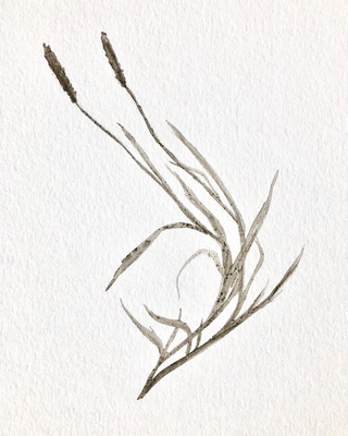 Dirt On Paper, 2018
