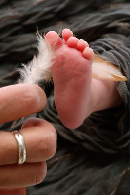 Babyfotoshooting, Mami kitzelt mit Feder den Babyfuss, Boniswil