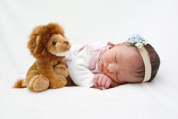 Newborn Fotoshooting, Bauchpose mit Lion, Lenzburg