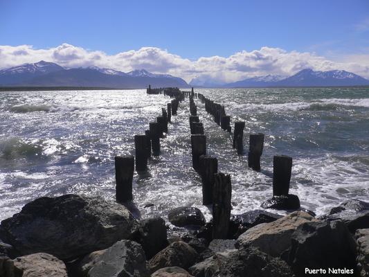 Bild: Punta Arenas - Blick auf´s Meer
