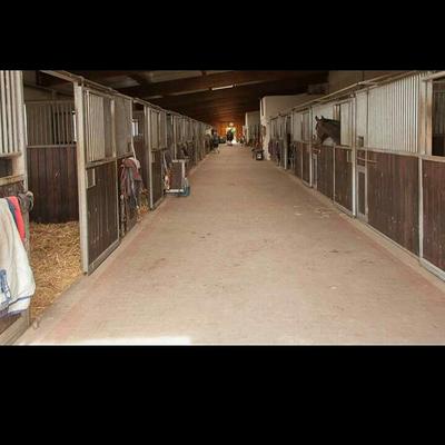Der große Stall (Foto: SJS)