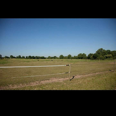 Blick über weiter Weiden, sowie unsere Galoppbahn (Foto: SJS)