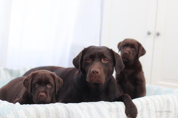 Trudie mit ihren Töchtern Tilda und Jussi