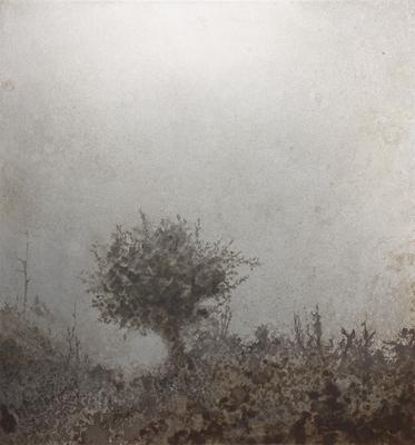 霧の中の木 / Tree in the mist / H267×W250mm / 06.2018