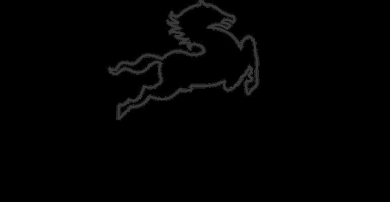Kunden Logo als Vorlage für die Mustererstellung für den Druck auf Naturleder