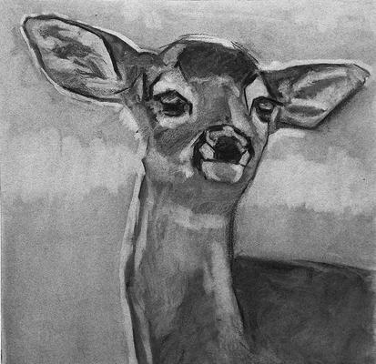 Cervatillo. Copia de Rita Kirkman, carboncillo 40 x 40 cm. Olalla Mancha (Alumna de 1º Año)