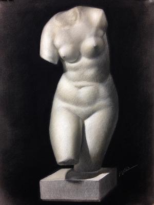 Torso de Venus, Carboncillo y blanco 65 x 50 cm. Jose Manuel Aguilar (Alumno de 1º año).