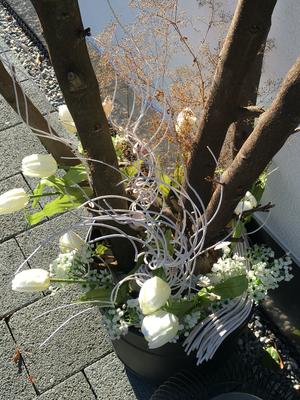 Frühlingsdekoration Tulpen Kirschlorbeer