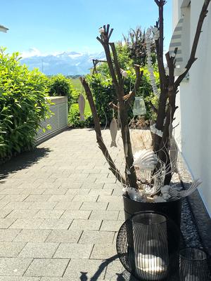 Sommerdekoration Kirschlorbeer