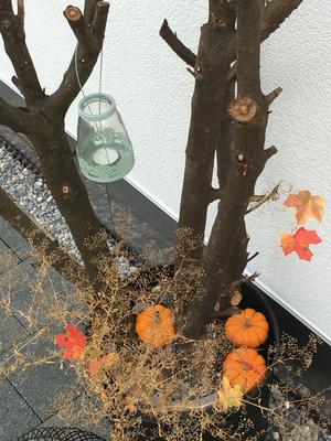 Herbstdekoration Kürbis Janine Fahrni