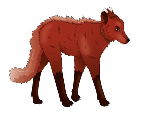 Cardamon-Wolf Grafik (Mai 2013)
