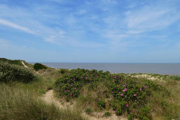 De Haan Strand