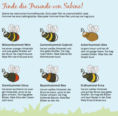 Ausmalhelft Biene Sabine und ihre Hummelfreunde