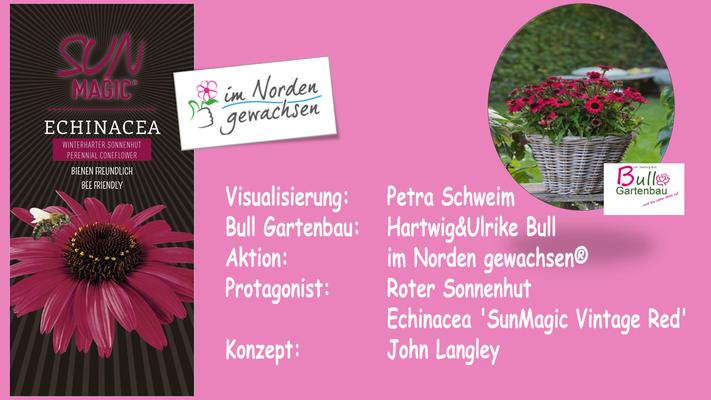 Collage: John Langley: Sommer - Herbstbotanik - Hartwig Bull, Gönnebek.