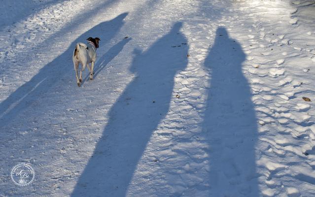 Licht und Schatten  -Jan17-